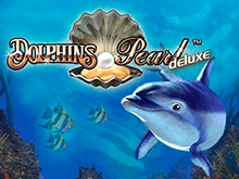 Dolphin's Pearl Deluxe на зеркале Вулкан